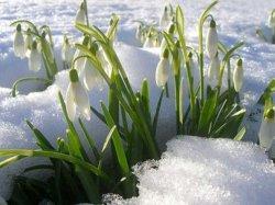 Загадки о весне
