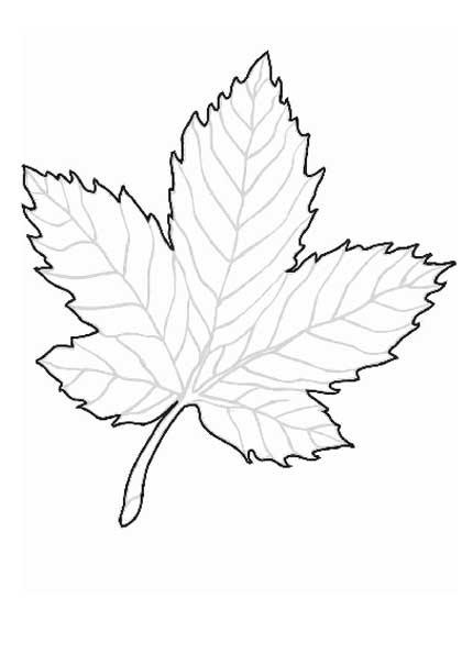 Картинки шаблоны осенних сказочных листьев