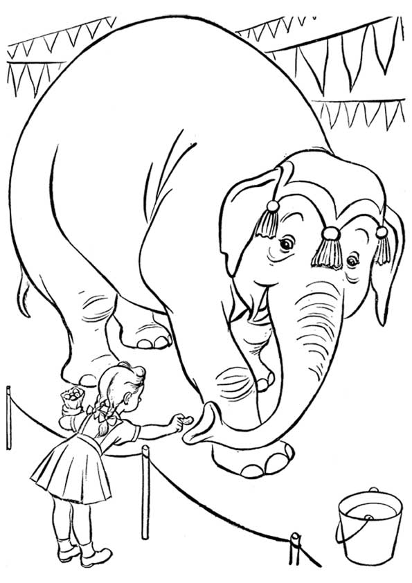 dawn coloring pages | Nicky Ricky Dicky And Dawn Coloring Pages Coloring Pages