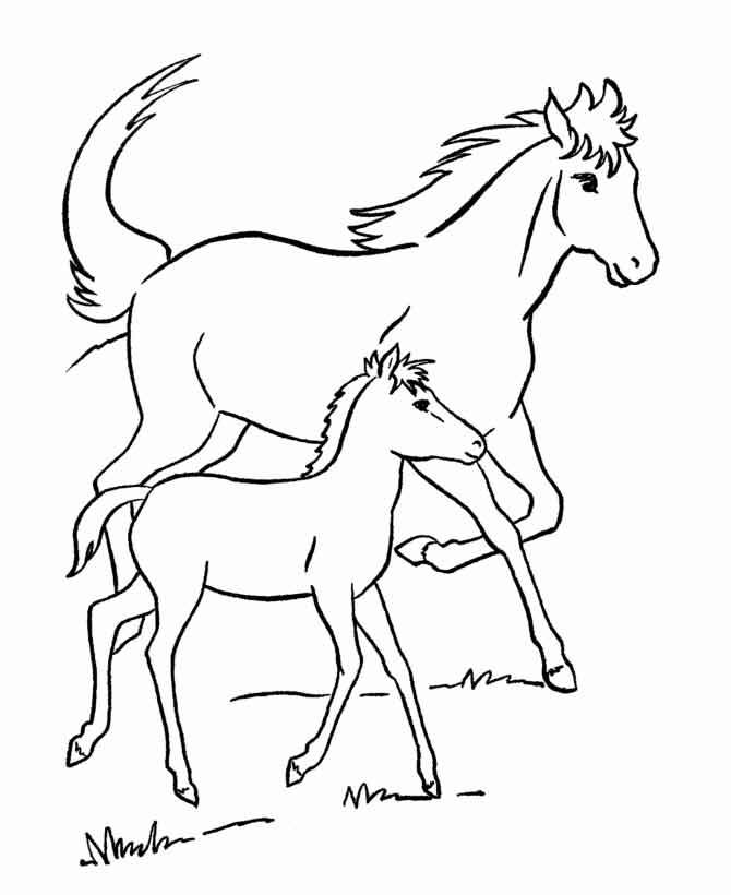 Раскраски для детей онлайн. раскраски онлайн. животные раскраски.