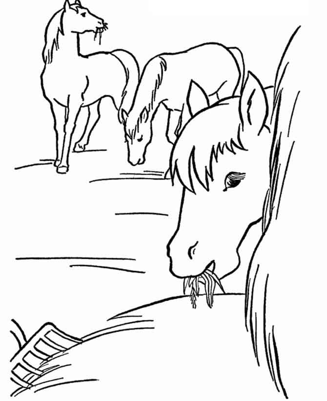 Раскрашивать все раскраски про лошадей