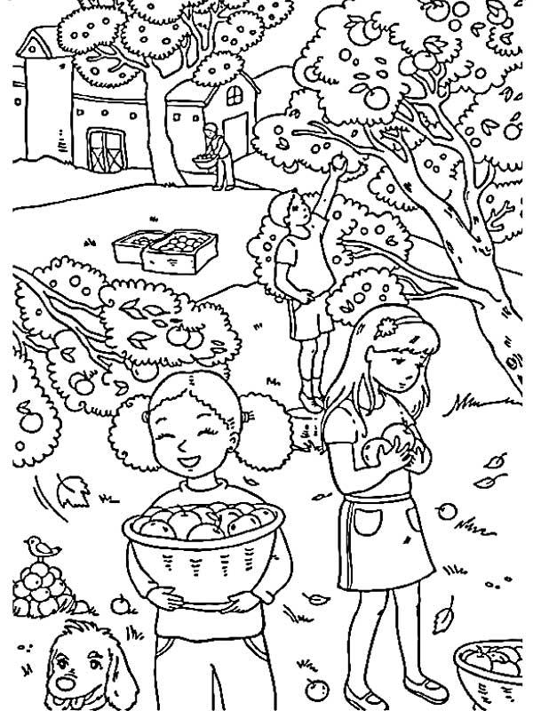 Картинки раскраски на тему осенний лес