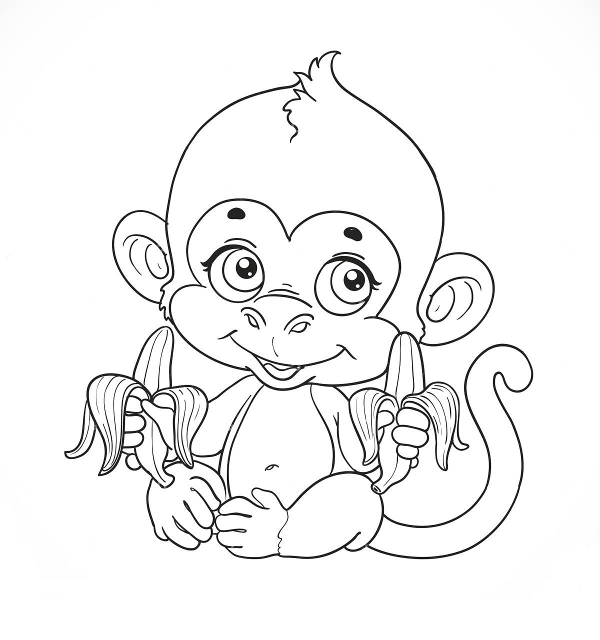 Раскраска обезьянки