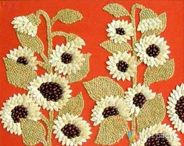 Картина из тыквенных семечек