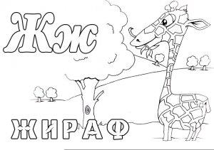 "Раскраски ""Зоопарк"""