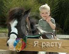 мальчик и пони