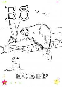 Раскраски на букву Б
