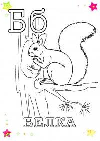 Раскраски животных на букву Б