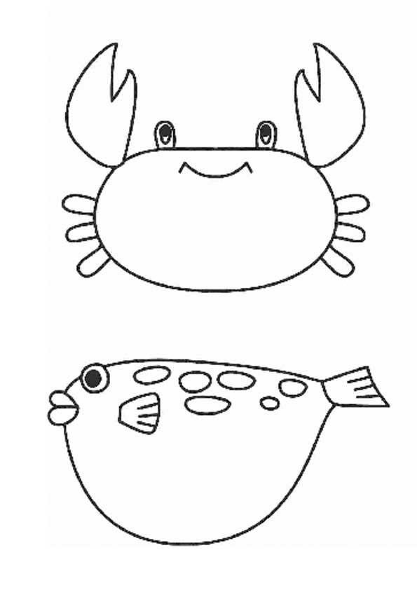 Медузы картинки