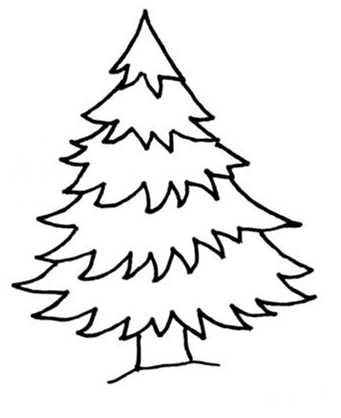 Раскраска елки картинки