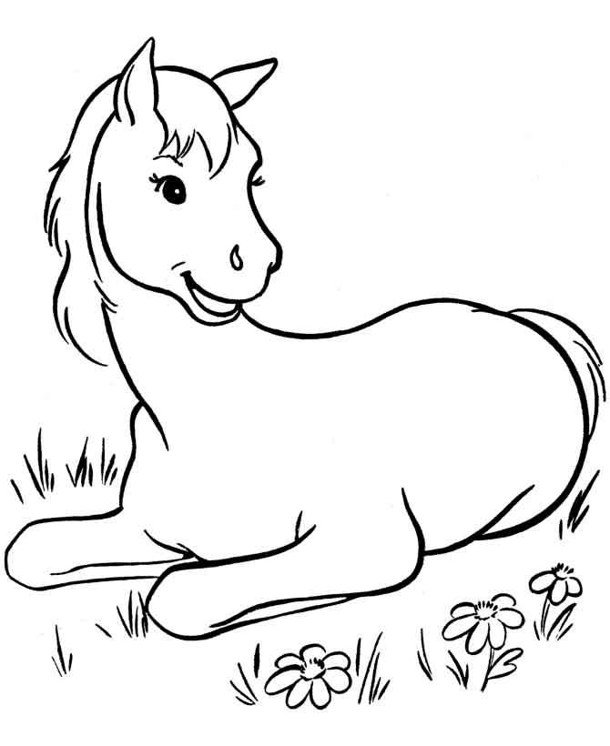 Раскраска лошадь и жеребенок распечатать