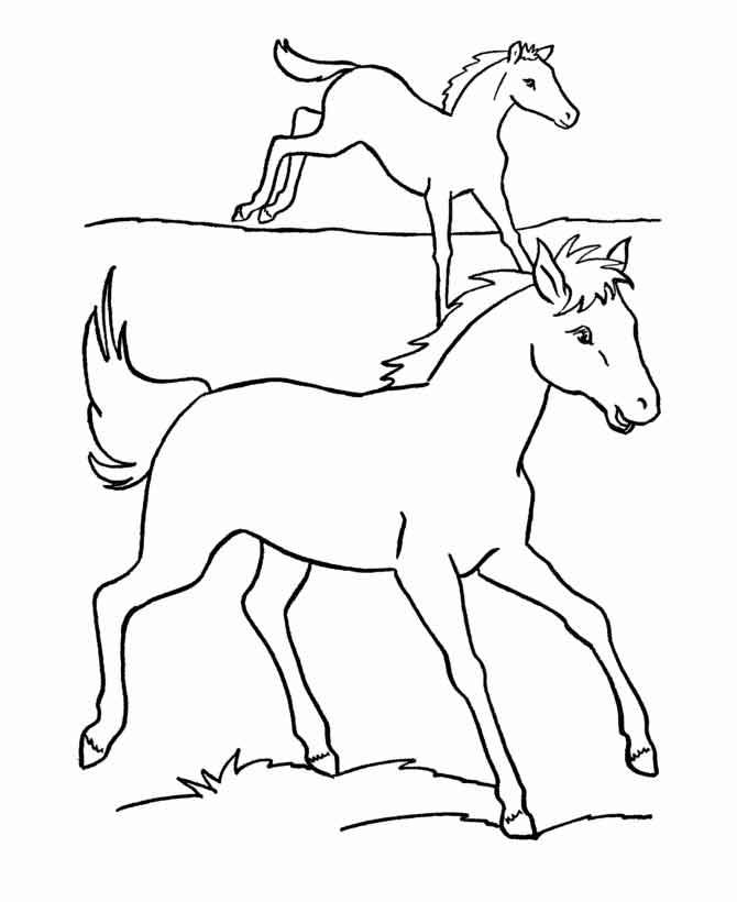 Раскраски лошадей, жеребят и пони