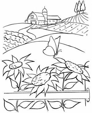 На даче и в саду