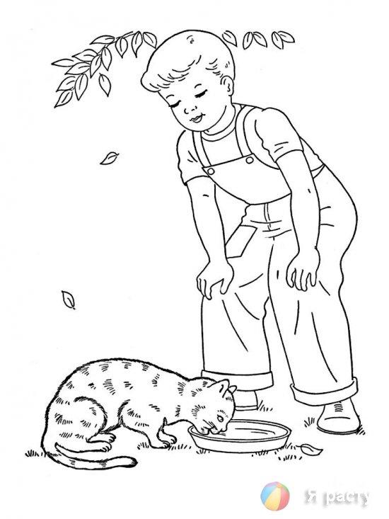 Мальчик и кот