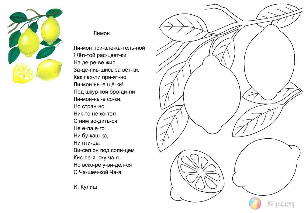 Раскраска поэтапно сказка и золотая рыбка где керамические