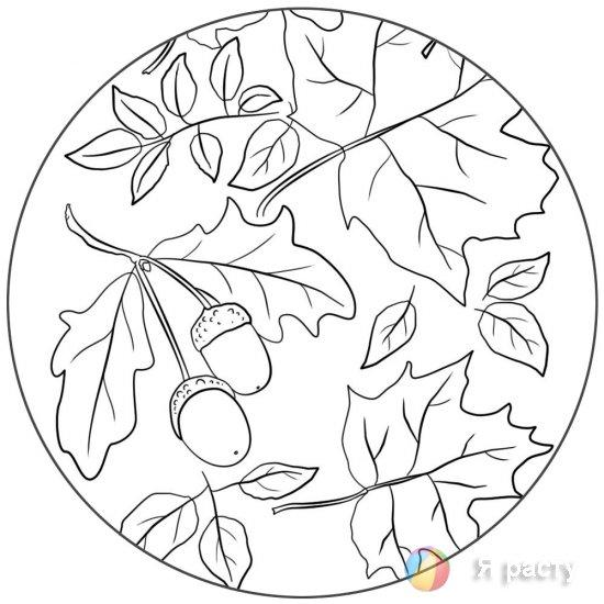 Осенние раскраски для взрослых и детей