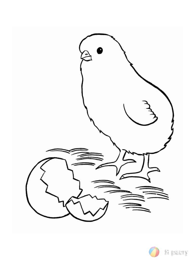 раскраски утки и гуси