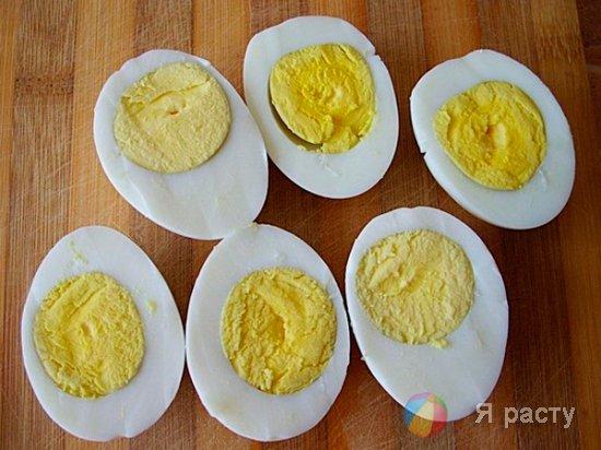 яйца, разрезанные на половинки