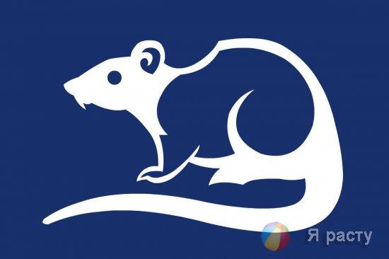 Вытинанка Крыса 2020