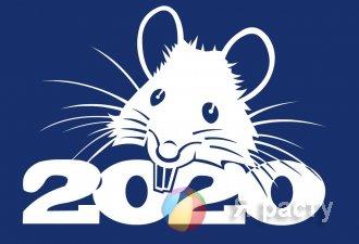 Крыса 2020